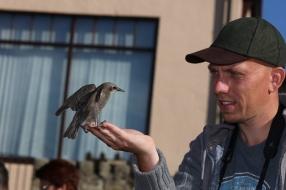 Duizend diersoorten gespot binnen 191 dagen: 'de topper zoemde rond in mijn achtertuin'
