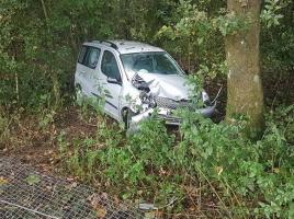 Auto rijdt vanaf A50 bos in; bestuurster met de schrik vrij