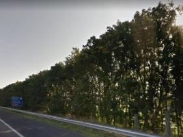 Gemeente wil zonnepanelen langs snelwegen bij Wijchen
