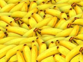 'Loopjongens' in de coke ramden onschuldige bananenhandelaar van de snelweg